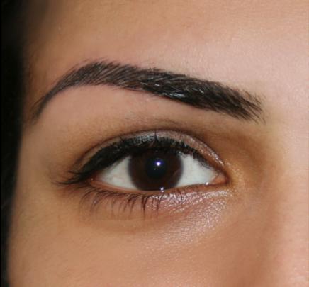 Eyebrow hair stroke permanent makeup reviews saubhaya makeup for Natural eyebrow tattoo